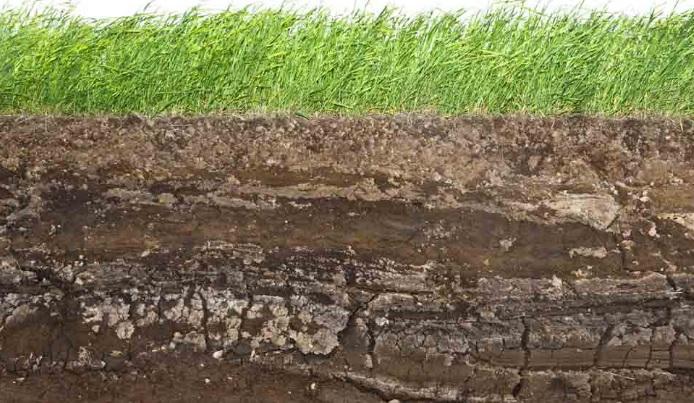 El suelo y su estructura f sica revista infoagro m xico for Partes del suelo