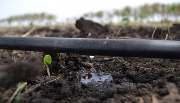 Agua de riego en cultivo hidrop nico revista infoagro m xico for Sistema de riego vertical